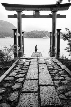 箱根, Torii gate of Hakone shrine, Japan Japanese Shrine, Japanese Temple, Hiroshima, Torii Gate, Japan Art, Japan Japan, Japanese Aesthetic, Japan Photo, Japanese Architecture