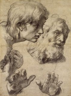 raphael-1483-1520-studies-of-the-heads-of-two-apostles-and-of-their-hands-black-chalk-touched-with-white-on-greyish-paper-499-x-364-mm-the-ashmolean-museum-oxford.jpg