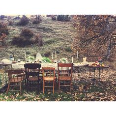 forest mountain dinner table - @anne_parker photo on Instagram