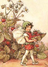 la hada de la fresa
