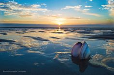 Hermosa foto en la playa ....