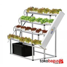 Soil-less hydroponics system