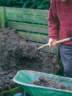 How to 'Go Green' in the Garden - including how to start a compost pile.  It's an easy project & your plants will thrive!!!