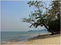 Amies et amis de la nature et des plages désertes bonjour, C'est un pur bonheur que de se promener le long des petites plages de Kaibae, de bonne heure, il n'y a pratiquement personne et il règne une tranquillité incitant au repos et à la méditation... Ces...