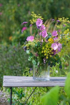 It's lovely to pick flowers too, here on the farm, aren't these pretty?.......     | Sonja Bannick Pictures