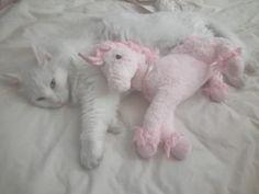 via Peachgirl ♡ http://momochiime.tumblr.com
