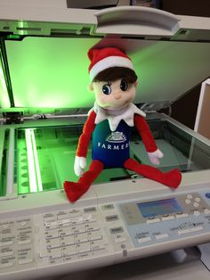 Sneaky Petey… We caught him at the copy machine making his Christmas cards....  www.facebook.com/CorwinReyInsuranceAgency  https://twitter.com/ReneeCorwinRey  http://www.farmersagent.com/rcorwinrey  http://corwinreyinsuranceagency.blogspot.com/