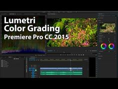 How To Use Lumetri Color Grading in Premiere Pro CC 2015 - YouTube