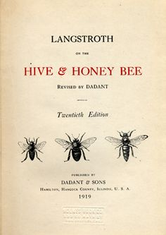 Hive & Honey Bee