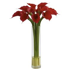 #Red Calla Lily w/Large Cylinder Vase.  A classic look perfectly recreated and brought home to you, this Red Calla Lily is an ideal accent piece for almost any décor. Standing tall (more than 2' high), the delicate blooms gently open, their petal lips forever pursed. The included cylinder vase (complete with liquid illusion faux water) holds it all together, making a home or office decoration that demands attention. Makes a great gift as well. #callalilly #callalillies #silkflowers