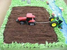 The Farmer's Cake