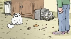Simon's cat - welcome home