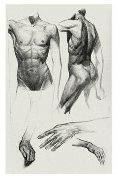 ArtStation - Sample Page of the Kickstarter Sketchbook Bryan Lee Human Anatomy For Artists, Human Anatomy Drawing, Human Figure Drawing, Figure Sketching, Figure Drawing Reference, Body Drawing, Anatomy Reference, Life Drawing, Body Sketches