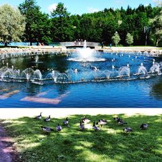 Vesiurut, Pikku-Vesijärvi, Lahti Lappland, Summer 2015, Dolores Park, To Go, City, Places, Nature, Travel, Finland