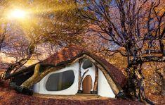 Hobbit Baumhaus Einbaumhaus - wie geil ist das denn!