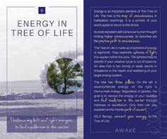 My Balance, Spiritual Teachers, Higher Consciousness, Healer, Tree Of Life, The Creator, Joy, Facebook, Happiness