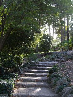 These steps of the Palace's garden make me feel like I'm in a fairytale. Palace Garden, Close To Home, 20 Years Old, Old World, Fairytale, Sidewalk, Around The Worlds, Country Roads, Adventure