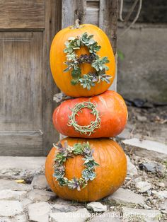 DIY: succulent worded pumpkins