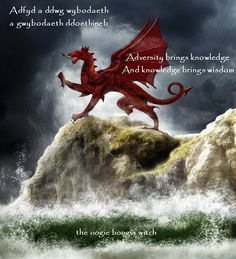 """The red Welsh dragon """"Y Ddraig Goch"""" owes its origins to folklore and Arthurian legend. Originating from a serpent representing the Welsh God Dewi, Celt. Y Ddraig Goch White Dragon, Red Dragon, Wales Uk, South Wales, Y Ddraig Goch, Welsh Sayings, Welsh Tattoo, Welsh Language, Welsh Castles"""