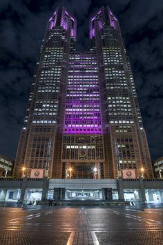 the Tokyo Metropolitan Government