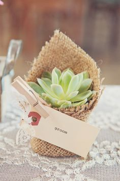 Succulent wedding favors on SMP for a California wedding.    http://www.stylemepretty.com/2012/08/14/smogshoppe-wedding-from-closer-to-love-photography/     thesucculentsource.com