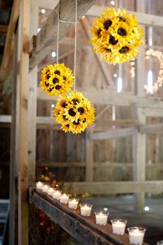 Sunflower Pomanders Idea---cute head table backdrop. Make with fake sunflowers glued onto foam balls and hang a varying heights from ribbom, lace strips, twine or burlap. Add a ribbon of same to top of ball for a little elegance!