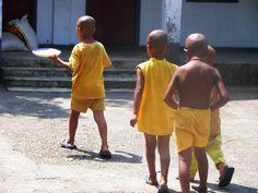 Siliguri w West Bengal/ Mini Monks near Siliguri in Khordong Monastery