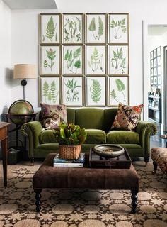 Olive Green and Brown - Great British Colonial Style