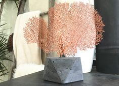 Sea Fan Sculpture  Concrete Geometric Base  Home Decor  Sea