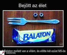 Villa a Balaton mellett Funny Images, Funny Photos, Funny Fails, Funny Jokes, Some Jokes, Bad Memes, Me Too Meme, Wholesome Memes, Funny Moments