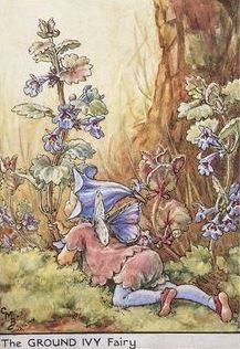 Cicely Mary Barker | The Ground Ivy Fairy