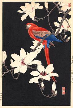 Hodo Nishimura (active 1930s)  Parrot on Magnolia, 1937