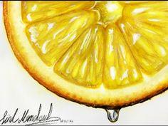 My drawing Lemon slice waterColor - aquarell - Lemon Painting, Lemon Watercolor, Fruit Painting, Dark Art Drawings, Realistic Drawings, Lemon Drawing, Lemon Crafts, Natural Form Art, Lemon Art