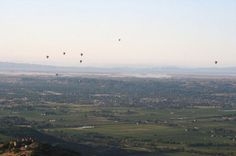 hot air balloons over Napa