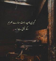 Urdu Funny Poetry, Poetry Quotes In Urdu, Best Urdu Poetry Images, Love Poetry Urdu, Urdu Quotes, Sufi Poetry, Qoutes, Fake Quotes, Words Hurt Quotes