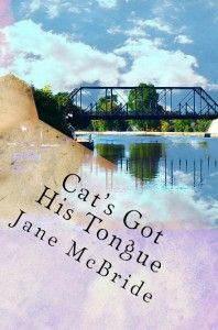 I have read Mcbride's previous three books starring Ann and Henry and I was looking forward to catching up with them like old friends in Cat...