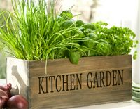 Backyard garden design garden site,potted vegetable garden ideas what you need to plant a garden,how to make kitchen garden at home make your own garden. Kitchen Garden Window, Herb Garden In Kitchen, Kitchen Herbs, Garden Windows, Mini Kitchen, Wooden Kitchen, Kitchen Sink, Kitchen Ideas, Herb Garden Kit