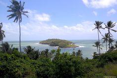 #Île du #Diable #Guyane