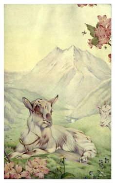 Spring - News of spring and other nature studies by Maurice Maeterlinck, 1917