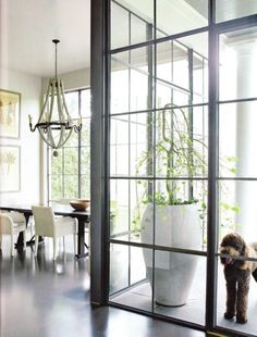 These steel and glass windows are so gorgeous ... I want to replace walls of my house with them! A home trend we love! Floor-to-ceiling steel windows. www.StyleBlueprint.com