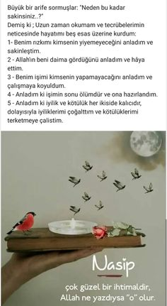 Şükür. . Good Sentences, Hafiz, Meaningful Words, Wise Quotes, Cool Words, Slogan, Allah, Poems, Projects To Try
