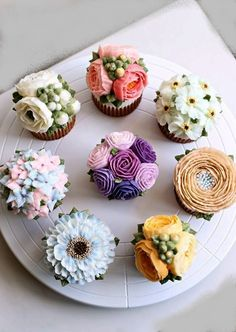 lovely butter cream cupcakes made by Alice. These are absolutely stunning,I couldnt bear to eat one,then again I do like cupcakes. Pretty Cakes, Cute Cakes, Beautiful Cakes, Amazing Cakes, Flores Buttercream, Buttercream Cupcakes, Mocha Cupcakes, Velvet Cupcakes, Vanilla Cupcakes