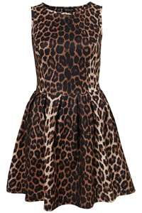 Image Search Results for animal print clothing