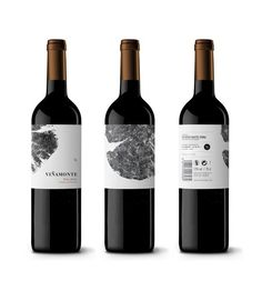 Bodegas Viñamonte - Dailos Pérez