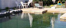 Schwimmteich, Naturpool, Biotop - garten-reinisch.at Outdoor Furniture Sets, Outdoor Decor, Home Decor, Pond, Swim, Room Decor, Home Interior Design, Home Decoration, Interior Decorating