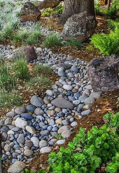 Heuchera, grasses and lily turf... big bolders. would change the actual river rocks