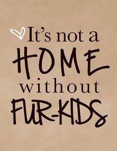 ♥FUR-KIDS♥