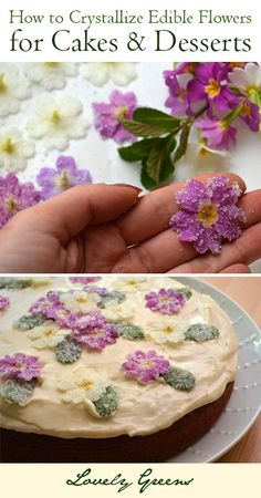 How to Crystallize Edible Flowers for a Cakes and Desserts ~ Lovely Greens