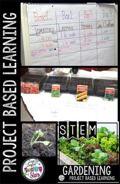 This PBL Gardening Activity will engage your 3rd, 4th, or 5th grade students as they design and create a school garden.  Students will making decisions while they learn about plant growth and make observations during this fun project. In this students led project, students will chart their plant growth. (third, fourth, fifth graders, Grade 3,4,5) #teachingthestars #tpt #teacherspayteachers