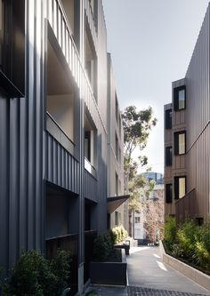 Gallery of Assembly Apartments / Woods Bagot - 2